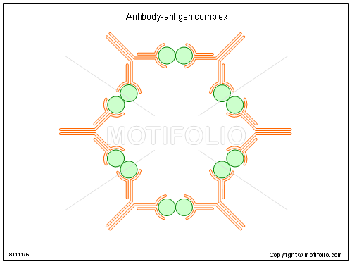 Antibody-antigen complex, PPT PowerPoint drawing diagrams, templates, images, slides