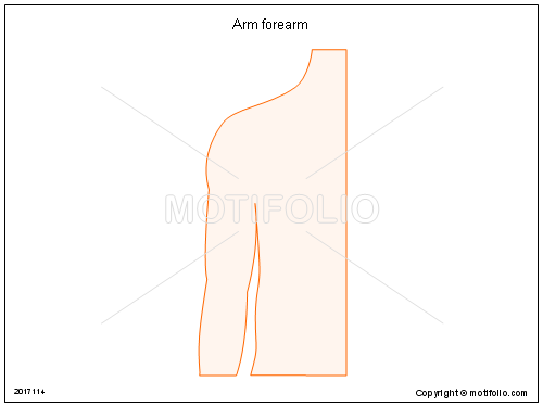 Arm forearm, PPT PowerPoint drawing diagrams, templates, images, slides
