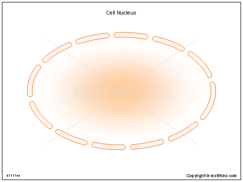 Cell Nucleus, PPT PowerPoint drawing diagrams, templates, images, slides