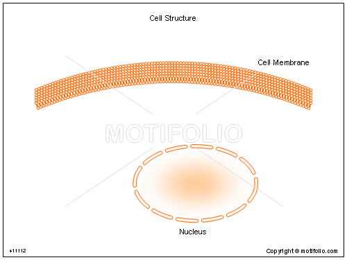 Cell Structure, PPT PowerPoint drawing diagrams, templates, images, slides