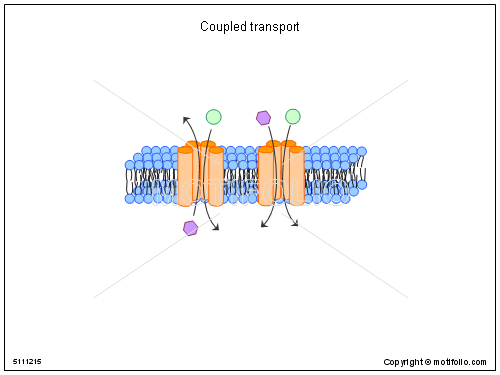 Coupled transport, PPT PowerPoint drawing diagrams, templates, images, slides