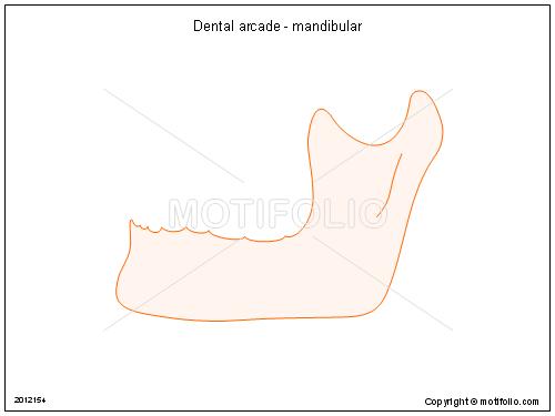 dental for windows user guide