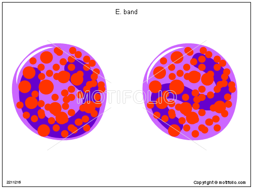 E band, PPT PowerPoint drawing diagrams, templates, images, slides