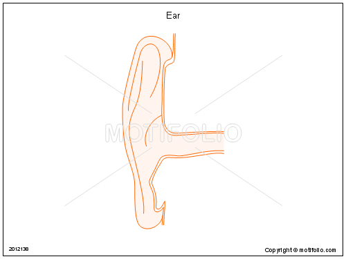 Ear, PPT PowerPoint drawing diagrams, templates, images, slides