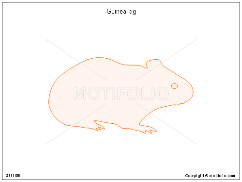 Guinea pig, PPT PowerPoint drawing diagrams, templates, images, slides
