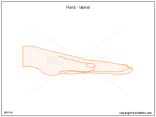 Hand - lateral, PPT PowerPoint drawing diagrams, templates, images, slides