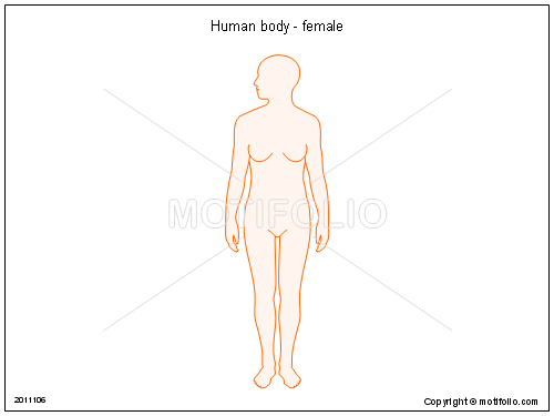 Human body - female, PPT PowerPoint drawing diagrams, templates, images, slides
