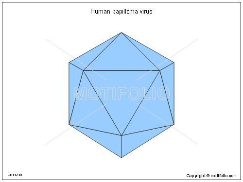 Human Papilloma Virus Illustrations Rh Motifolio Com Diagram Labeled Fungus