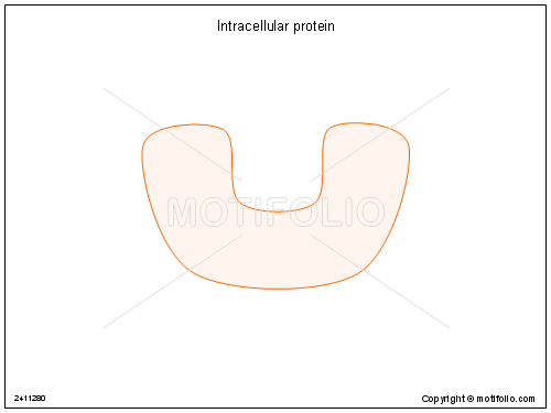 Intracellular protein, PowerPoint Templates, Images, Diagrams, Slides