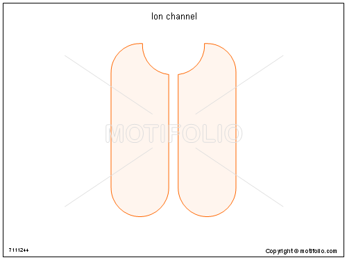 Ion channel, PPT PowerPoint drawing diagrams, templates, images, slides