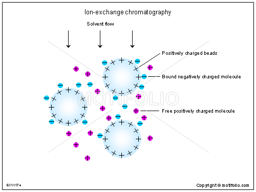 Ion-exchange chromatography, PPT PowerPoint drawing diagrams, templates, images, slides