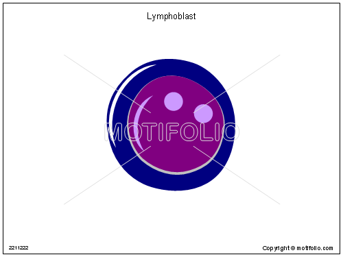 Lymphoblast, PPT PowerPoint drawing diagrams, templates, images, slides