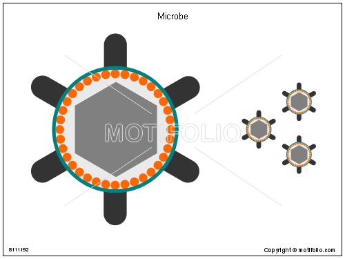 Microbe, PPT PowerPoint drawing diagrams, templates, images, slides