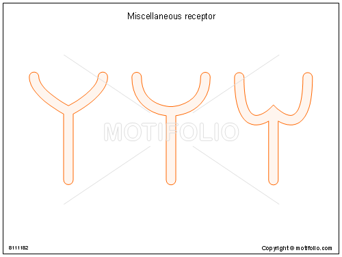 Miscellaneous receptor, PPT PowerPoint drawing diagrams, templates, images, slides