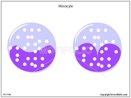 Monocyte, PPT PowerPoint drawing diagrams, templates, images, slides