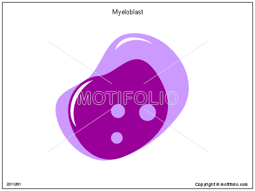 Myeloblast, PPT PowerPoint drawing diagrams, templates, images, slides