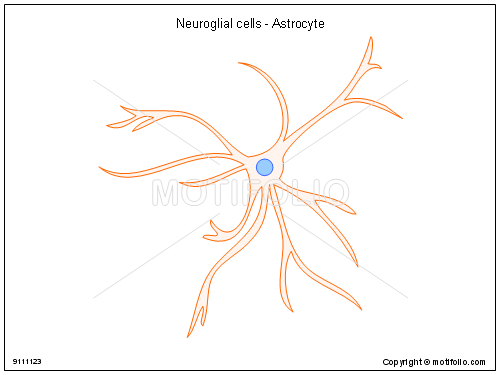Neuroglial cells - Astrocyte, PPT PowerPoint drawing diagrams, templates, images, slides