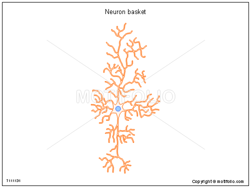 Neuron basket, PPT PowerPoint drawing diagrams, templates, images, slides