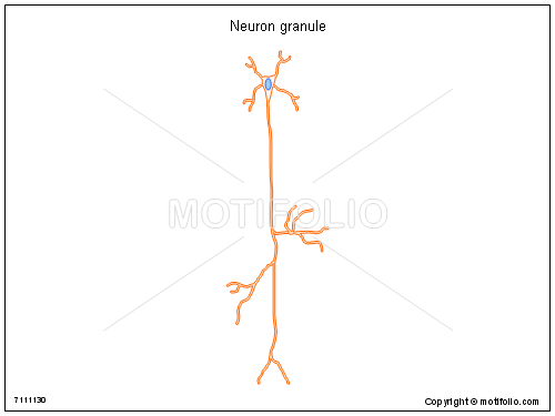 Neuron granule, PPT PowerPoint drawing diagrams, templates, images, slides