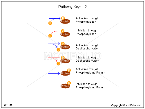 Pathway Keys - 2, PPT PowerPoint drawing diagrams, templates, images, slides