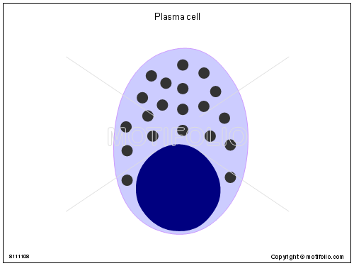Plasma cell, PPT PowerPoint drawing diagrams, templates, images, slides
