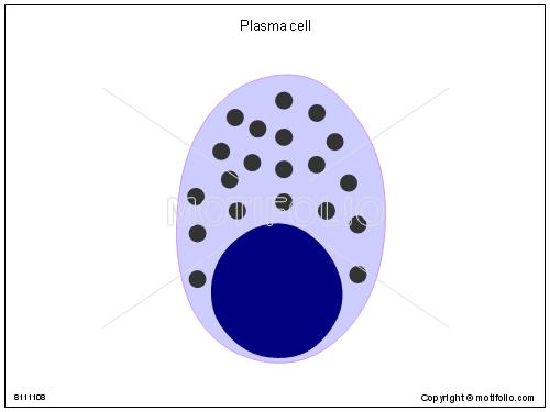 Diagram Of Plasma On Wiring Diagram
