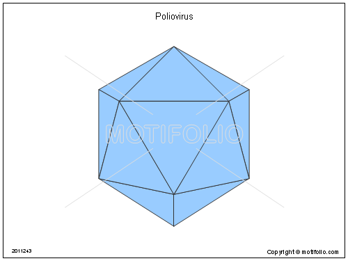Poliovirus PPT PowerPoint drawing diagrams, templates, images, slides