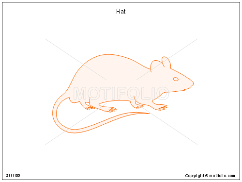 Line Drawing Rat : Rat illustrations