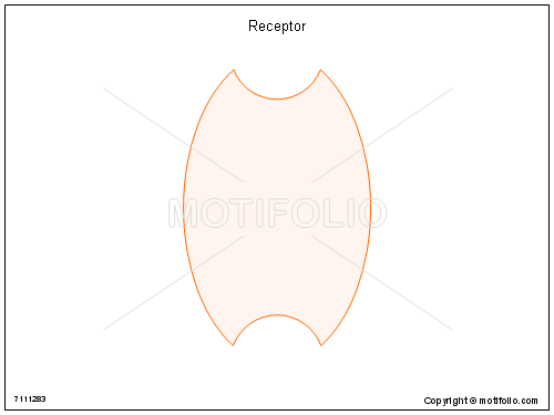 Receptor, PPT PowerPoint drawing diagrams, templates, images, slides