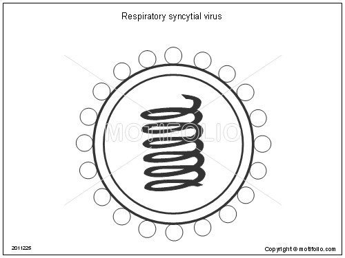 respiratory syncytial virus illustrations
