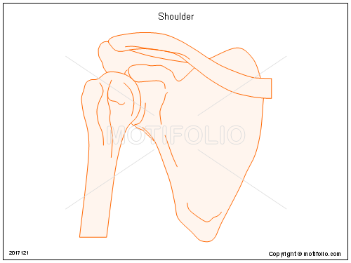Shoulder, PPT PowerPoint drawing diagrams, templates, images, slides