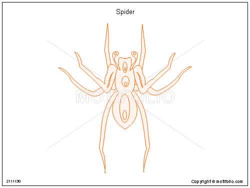 Spider, PPT PowerPoint drawing diagrams, templates, images, slides
