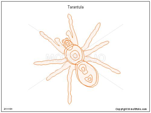 tarantula ppt powerpoint drawing diagrams templates images slides : tarantula diagram - findchart.co