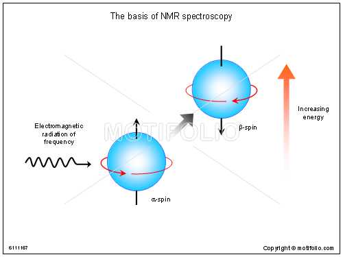 The basis of NMR spectroscopy, PPT PowerPoint drawing diagrams, templates, images, slides