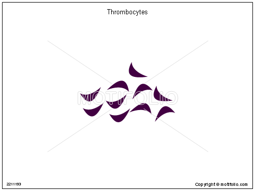 Thrombocytes, PPT PowerPoint drawing diagrams, templates, images, slides