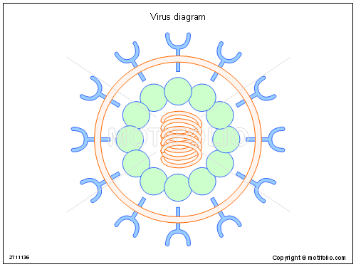 Virus diagram illustrations virus title virus diagram ccuart Choice Image